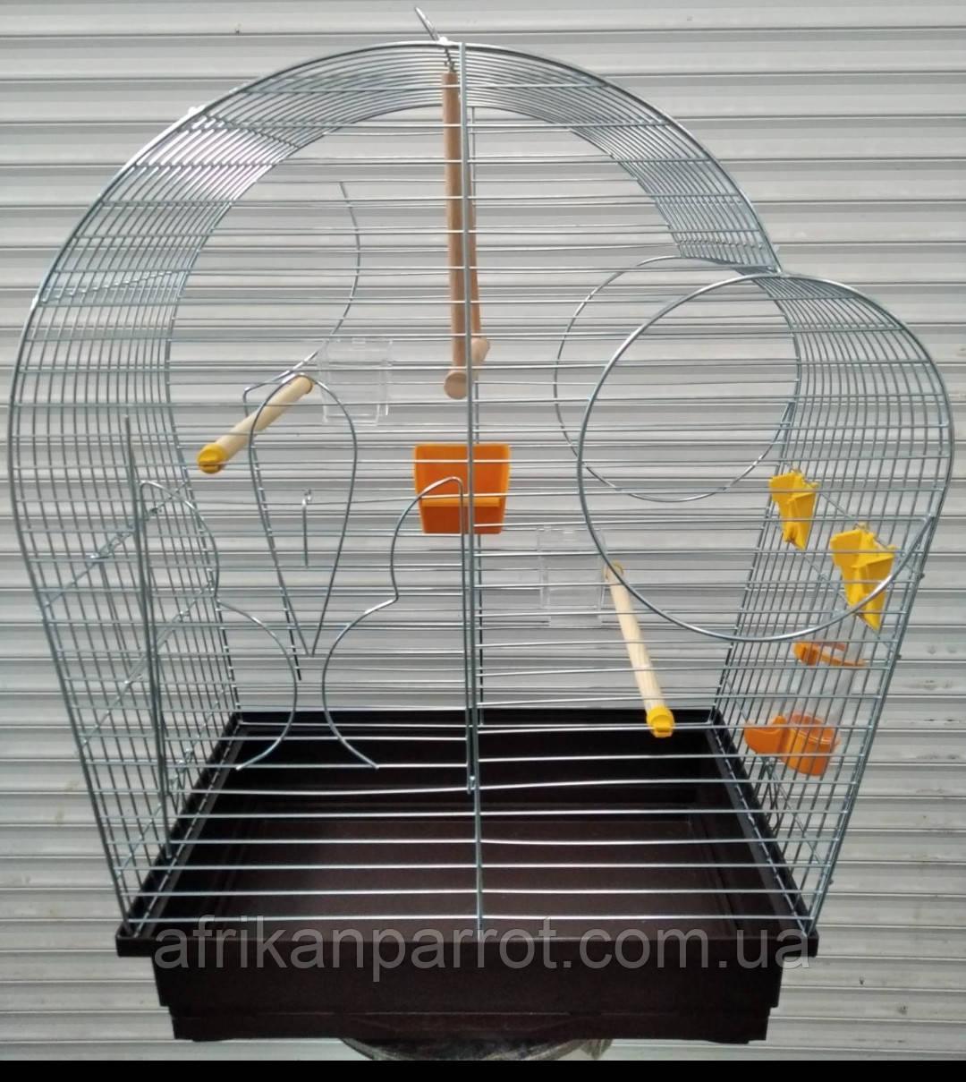 Клетка для попугая цинк Патриот 56х31х69