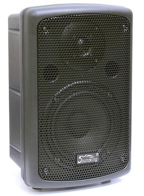 SOUNDKING FP208A Активная акустическая система (SKFP208A)