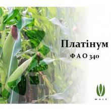 Насіння Кукурудзи ПЛАТИНУМ ф1 ФАО 340 (18,3) (Маїс Черкаси)
