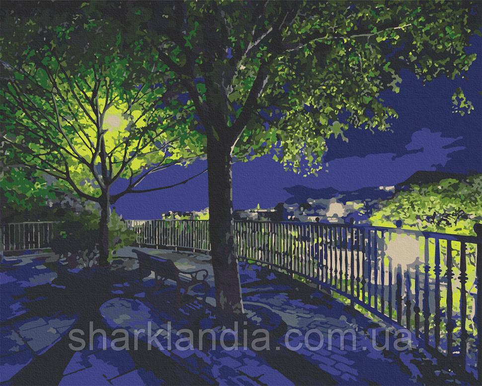"""Картина по номерам. Art Craft """"Ночной парк"""" 38*50 см 10532-AC"""
