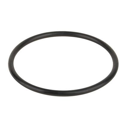 Aquaviva Уплотнительное кольцо соединительной муфты насоса Aquaviva VWS/STP 25-120