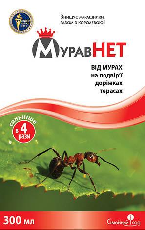 Інсектицид Муравнет (300 гр), Сімейний Сад, фото 2