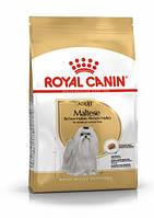 Royal Canin Maltese Adult (Роял Канин Мальтиз Эдалт) сухой корм для собак мальтийская болонка от 10 месяцев