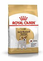 Royal Canin Jack Russel Adult (Роял Канин Джек Рассел Эдалт) корм для собак джек-рассел-терьер от 10 месяцев