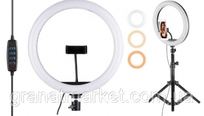 Набор блогера 3 в 1 Кольцевая Led лампа 33 см с держателем для телефона Селфи кольцо. Кольцевой свет Штатив 2