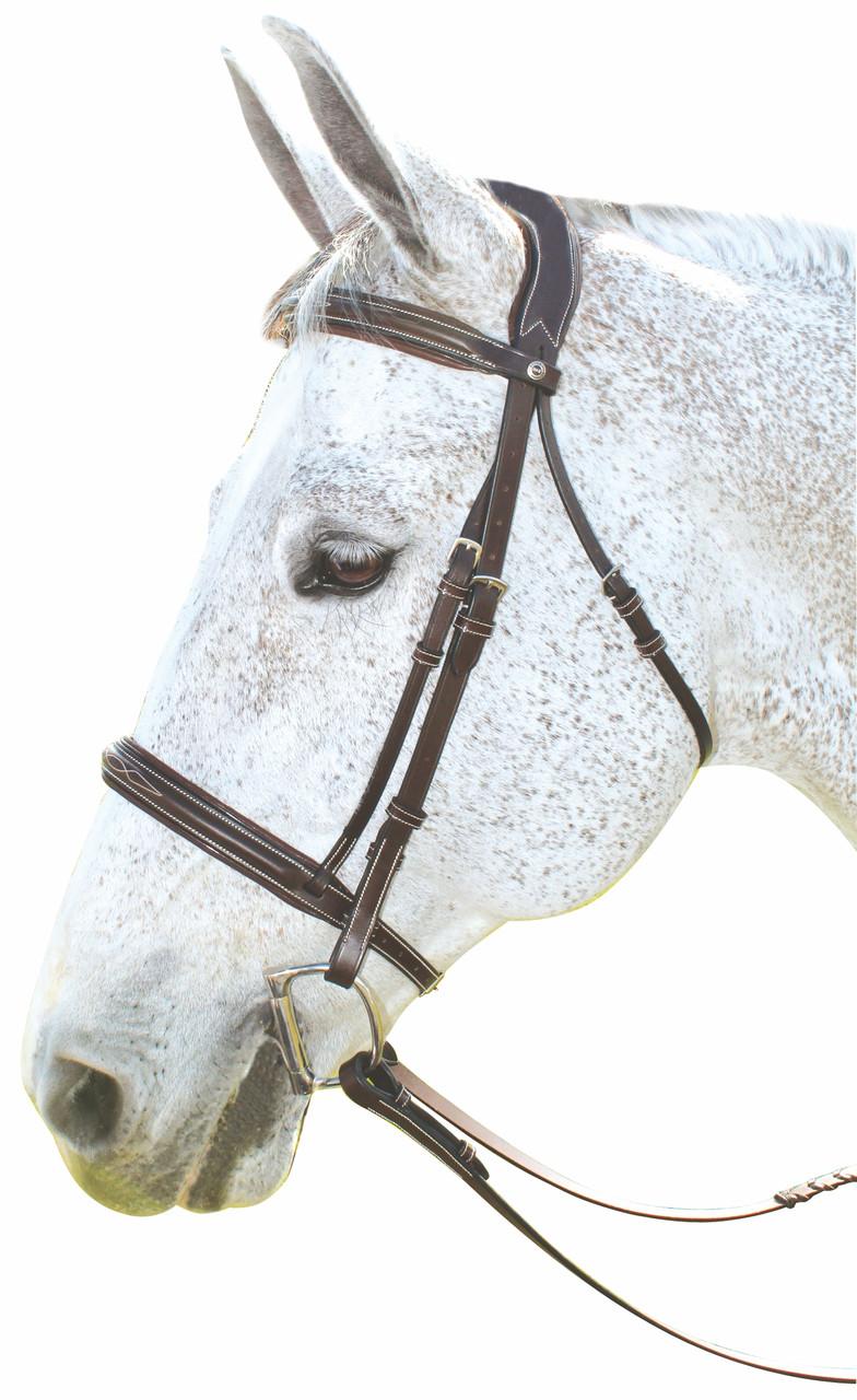 Уздечка с лакированной вставкой, Франция - Интернет-магазин  конной амуниции и экипировки всадника LUX-EQUINE в Киеве