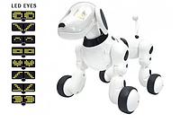 Интерактивная игрушка робот собачка на радиоуправлении RobotDog робот-собака на р/у Бело-Черный 619