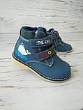 Ботинки для мальчиков Сказка 22р, 14см, фото 7