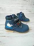 Ботинки для мальчиков Сказка 22р, 14см, фото 8