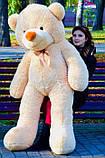 М'який плюшевий ведмедик 2 метри. Великий плюшевий ведмедик. М'який ведмідь, фото 5