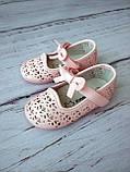 Туфли для девочек Apawwa (Румыния), фото 6
