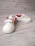 Кросівки/кеди для хлопчиків Apawwa (Румунія), фото 5