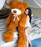 М'який плюшевий ведмедик 2 метри. Великий плюшевий ведмедик. М'який ведмідь, фото 2