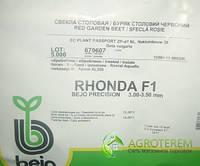 Свекла Ронда RHONDA F1 5000с, фото 1
