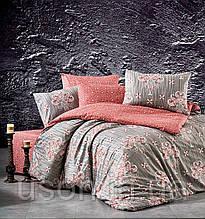 Комплект постельного белья ранфорс  Nazenin полуторный размер Aster Kiremit