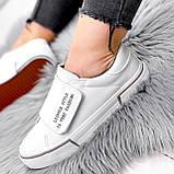 Кроссовки женские Greg белые с серым 2848, фото 3