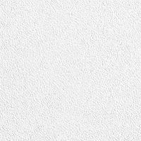 Подвесные потолки AMF Thermaclean SK 600x600x15мм