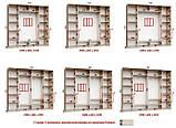 Шкаф купе 3-х дверный с пескоструем, фото 8
