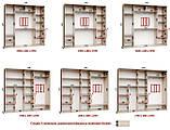 Шкаф купе 3-х дверный с пескоструем, фото 10