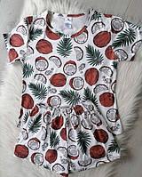 Женская пижама футболка с шортами с принтом Кокосы размер S, M, L, XL