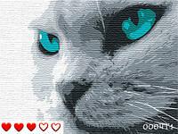 "Картина по номерам ""Кіт"""