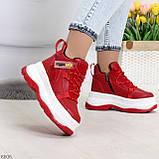 Модные трендовые красные женские кроссовки на платформе на флисе на молнии, фото 2