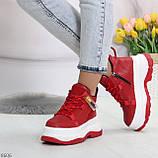 Модные трендовые красные женские кроссовки на платформе на флисе на молнии, фото 4
