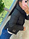 Куртка Женская Демисезонная, фото 2