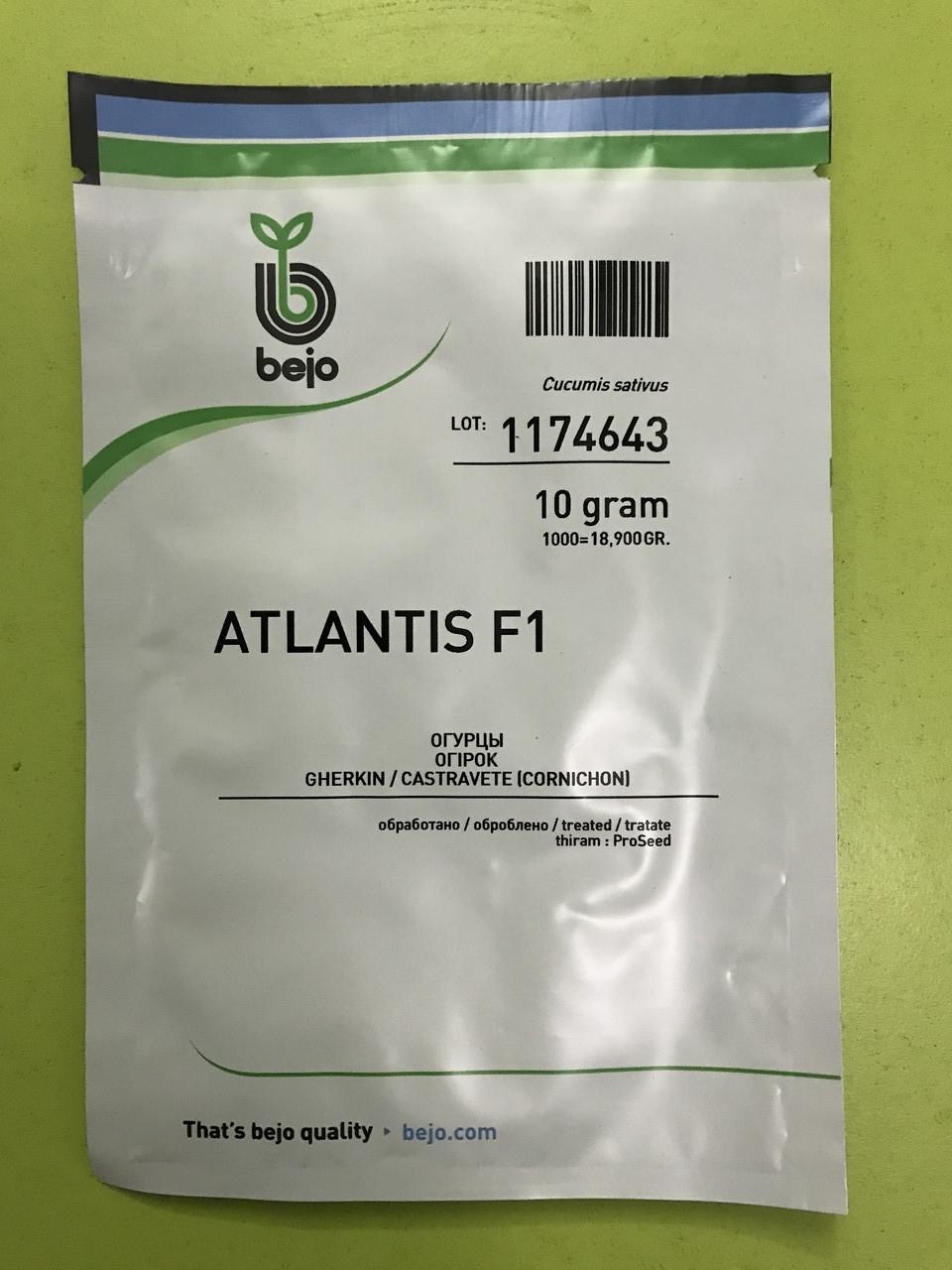Огірок Атлантіс F1 10 г бджолозапильний ранній Bejo Zaden