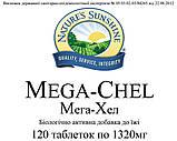Мега Хел (Mega - Chel) НСП. Мега - Хел NSP. Натуральная БИОДОБАВКА, фото 5