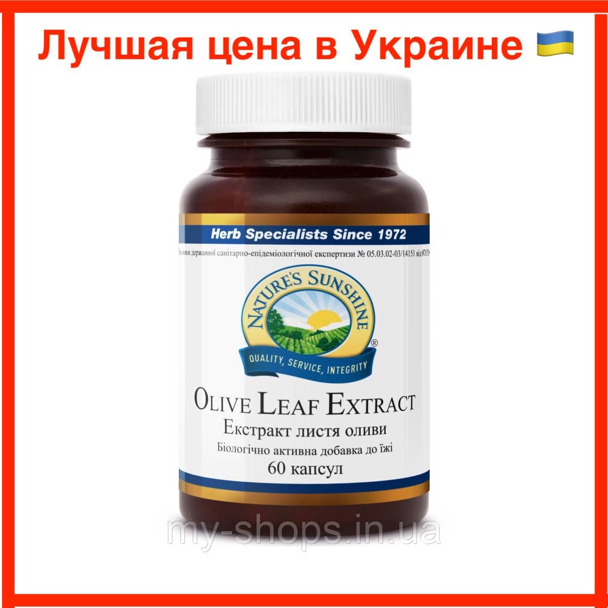 Экстракт листьев оливы, Nsp. Olive Leaf Extract Экстракт Листьев Оливы НСП. Натуральная Биодобавка