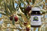 Экстракт листьев оливы, Nsp. Olive Leaf Extract Экстракт Листьев Оливы НСП. Натуральная Биодобавка, фото 3