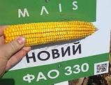 Насіння кукурудзи, ДН Берека, семена кукурузи, фото 6