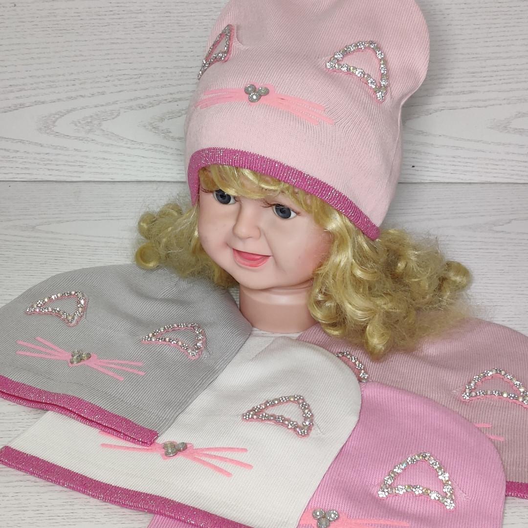 Шапка для дівчинки Демісезонна  з вушками стрази киця Розмір 48-50 см Вік 2-4 роки