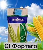 Насіння кукурудзи СІ Фортаго Syngenta (ФАО 260)