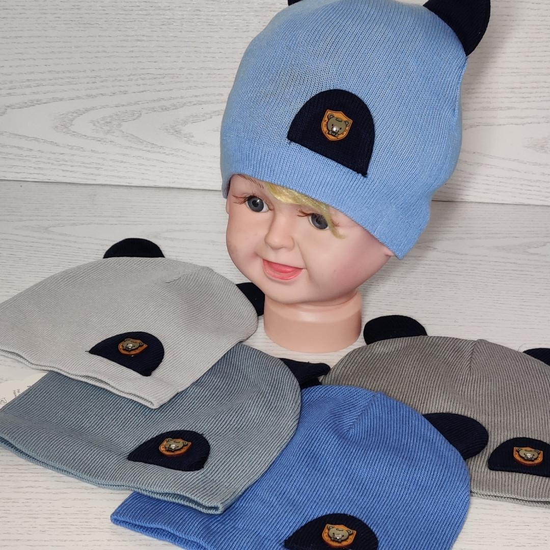 Шапка для мальчика Демисезонная с ушками 3 Размер 44-46 см Возраст 6-12 месяцев