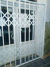 Раздвижные металлические решетки на двери Николаев