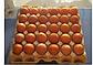 Редбро инкубационное яйцо, фото 2