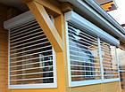 Прозрачные рольставни из поликарбоната для террасы, фото 3