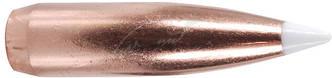 Пуля Nosler AccuBond SP (Spitzer Point) кал. 30 масса 10,7 г/ 165 гр (50 шт)