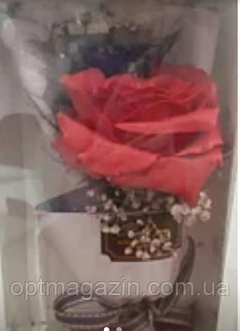 Роза в подарунковій упаковці, фото 2