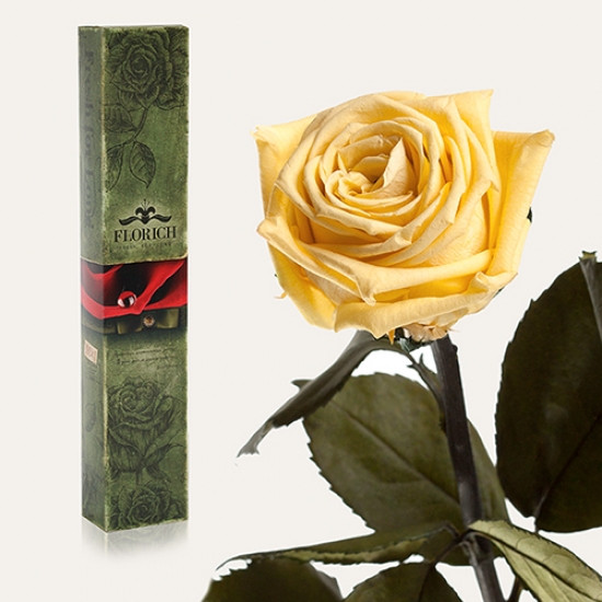 Долгосвежая роза Желтый Топаз 7 карат (короткий стебель)