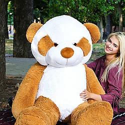 Плюшевые медведи: Плюшевый медвежонок Панда 2 метра (200 см), Коричневый