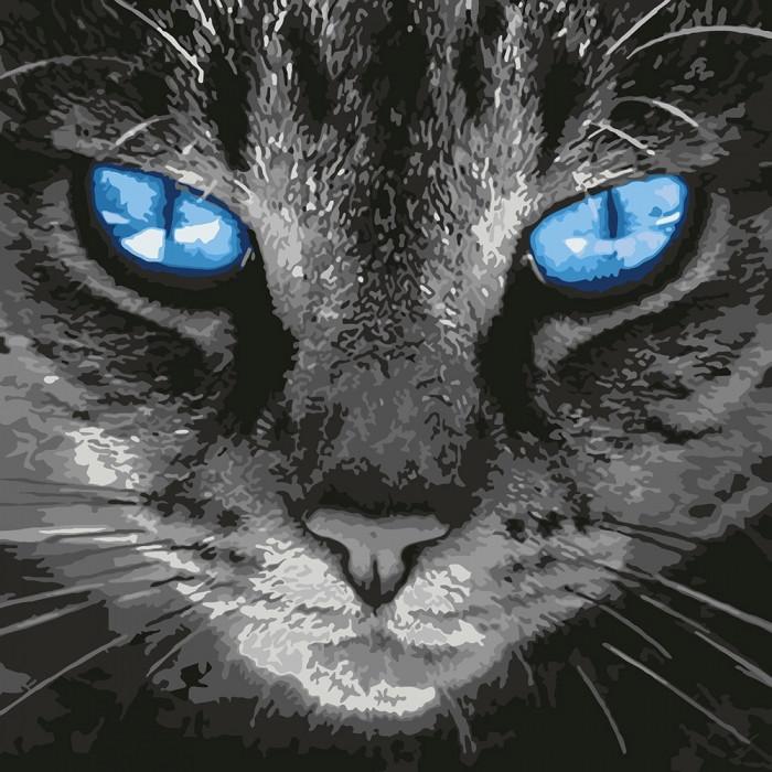 Картина по номерам КНО4177 Пронзительный взгляд, кот 40*40см Идейка