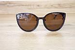 Солнцезащитные очки с футляром F0946-2, фото 6