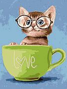 Картина по номерам Babylon Любопытный котенок 30*40 см (в коробке) арт.VK261