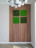 Декоративні дерев'яні рейки. Дерев'яні рейкові панелі. Рейкові перегородки., фото 2