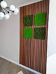 Декоративные деревянные рейки. Деревянные реечные панели. Реечные перегородки., фото 6