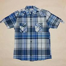 Рубашка мужская с коротким рукавом DKN р.S (44) Синий клетка