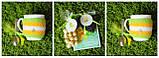 Подарочный набор Мимоза, фото 3